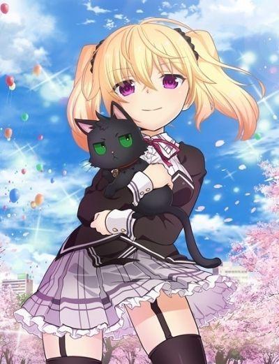 Нора, принцесса и бродячий кот / Nora to Oujo to Noraneko Heart [12 из 12]