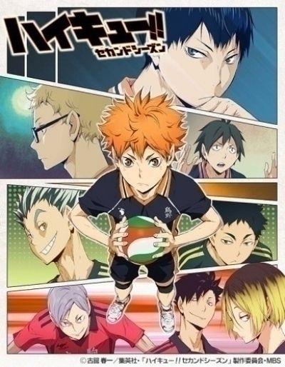 Волейбол!! ТВ-2 / Haikyuu!! Second Season [25 из 25]