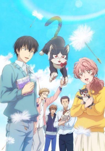 Кошечка, сидящая у меня на голове / Doukyonin wa Hiza, Tokidoki, Atama no Ue. [12 из 12]