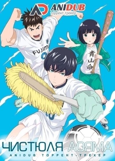 Чистюля Аояма / Keppeki Danshi! Aoyama-kun [12 из 12]